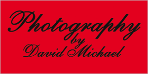 Photography by David Michael